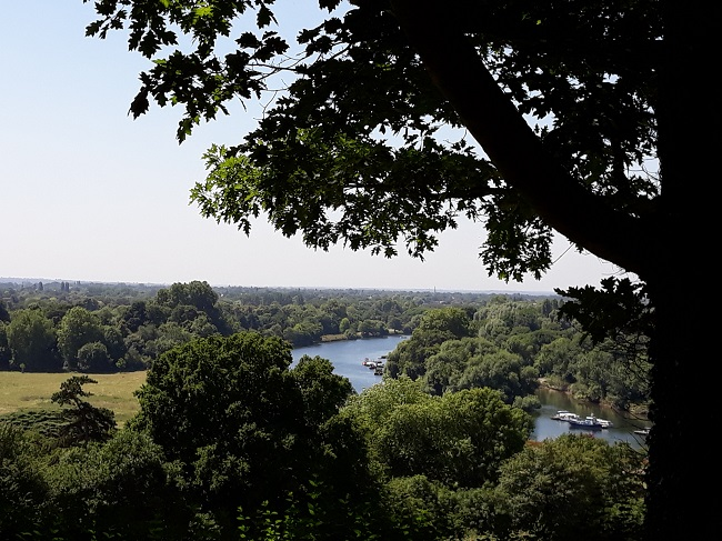 View atop of Richmond Hill